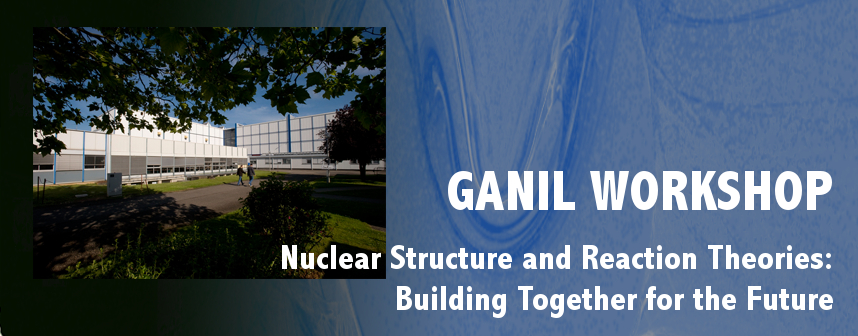 Nuclear Structure and Reactions: Building Together for the Future