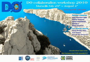 D0 Collaboration summer Workshop 2010 in Marseille